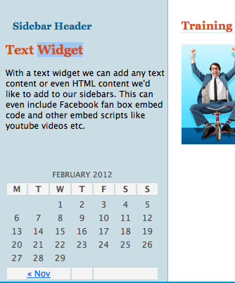 Example Widgets Preview