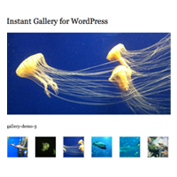 How to Create an Instant Image Gallery Plugin for WordPress