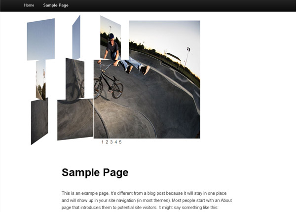 Creating Your Own Image Gallery Page Template in WordPress | Wptuts+
